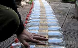 Простая тёплая грядка из пластиковых бутылок