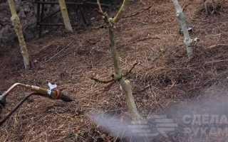 Аэрозольный генератор холодного тумана своими руками